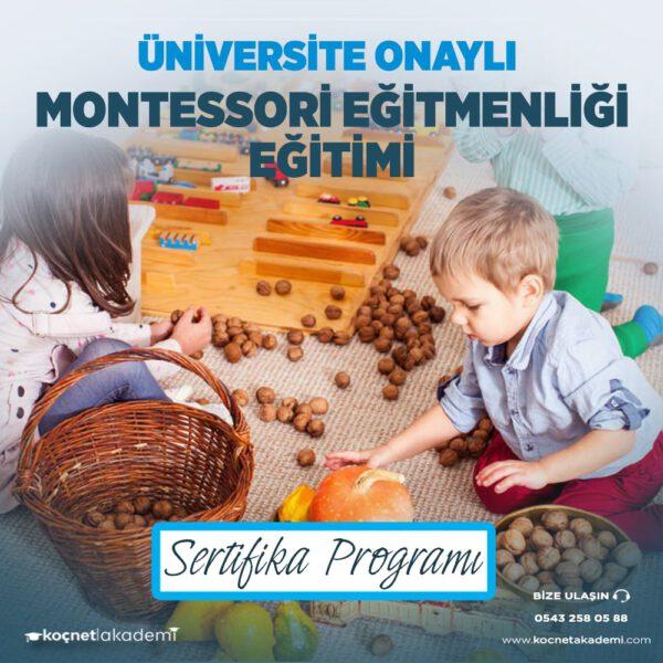 montessori eğitimi sertifikası