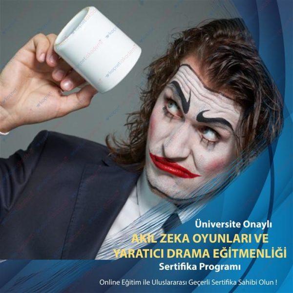 akıl zeka oyunları eğitimi ve yaratıcı drama eğitimi sertifikası