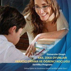 Akıl zeka oyunları, yaratıcı drama eğitmenliği, öğrenci koçluğu ve eğitim danışmanlığı