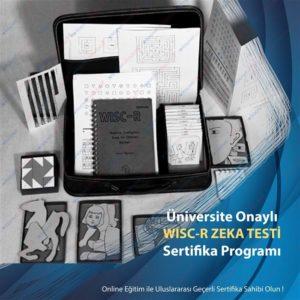 WISC-R Zeka Testi Eğitimi