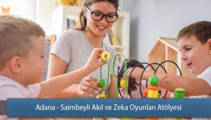Adana - Saimbeyli Akıl ve Zeka Oyunları Atölyesi
