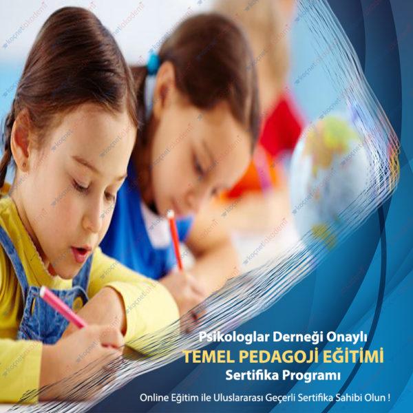 Temel Pedagoji Eğitimi