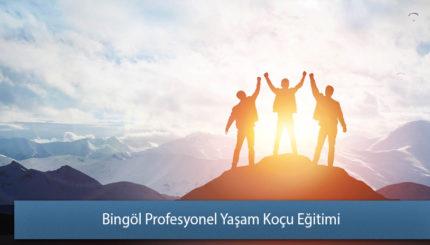 Bingöl Profesyonel Yaşam Koçu Eğitimi