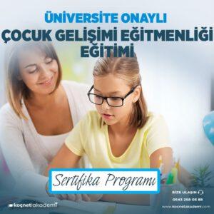 çocuk gelişimi eğitici eğitimi sertifikası