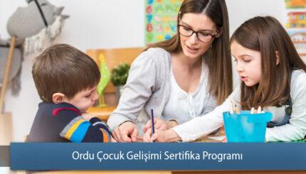 Ordu Çocuk Gelişimi Sertifika Programı