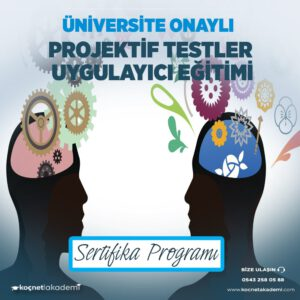 projektif test uygulayıcılığı eğitimi sertifikası
