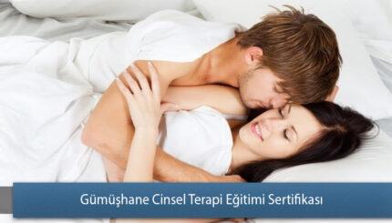 Gümüşhane Cinsel Terapi Eğitimi Sertifika
