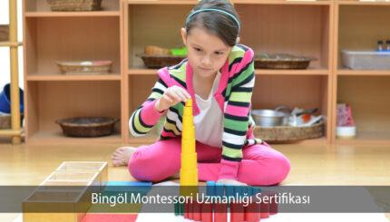Bingöl Montessori Uzmanlığı Sertifikası
