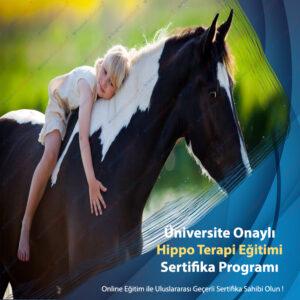 Hippo Terapi Eğitimi Sertifikası