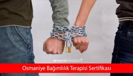 Osmaniye Bağımlılık Terapisi Sertifikası